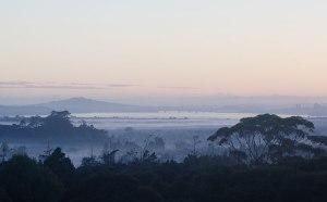 Misty-Morn-from-Home-DSC2-sfw
